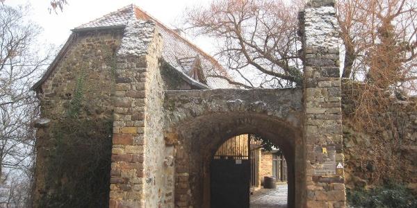 Die Burg Battenberg wurde von einem Leininger Grafen im 13. Jahrhundert erbaut.