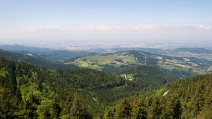Blick vom Schauinsland in die Rheinebene