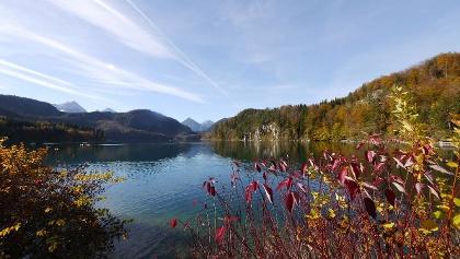 Blick vom Ostufer über den Alpsee