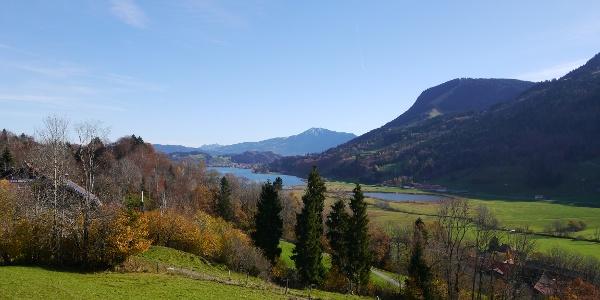 Oberhalb von Reuter mit schönem Blick über den Alpsee zum Grünten