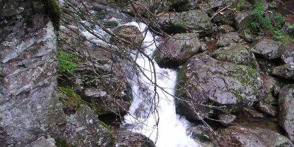 Der Riesbach fällt steil ab.