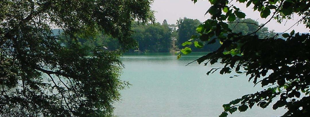 Die Roseninsel wird mit einem Elektroboot angefahren und ist einen Besuch wert.