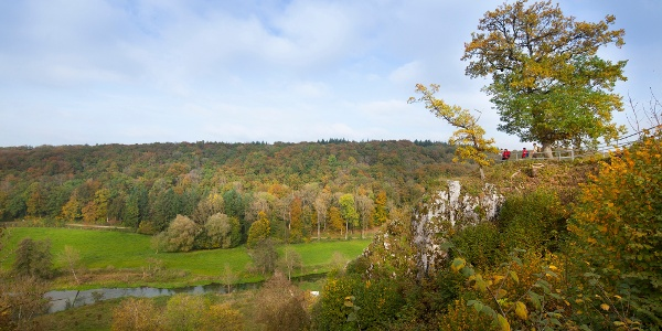 Aussichtsplattform Falkenstein