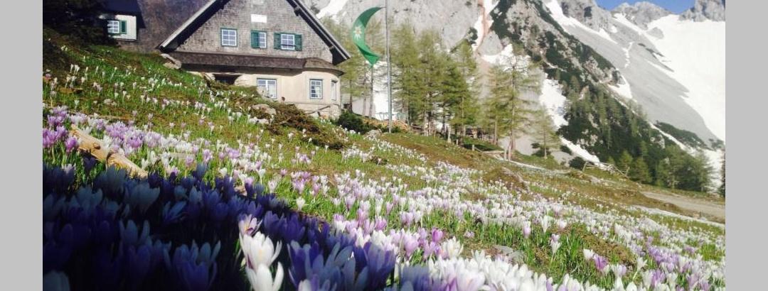 Klagenfurter Hütte im Frühjahr