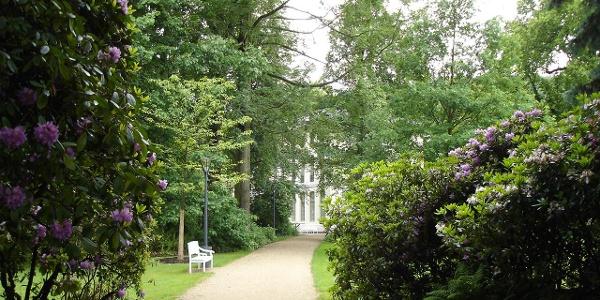 Im Greizer Park - Blick zum Sommerpalais
