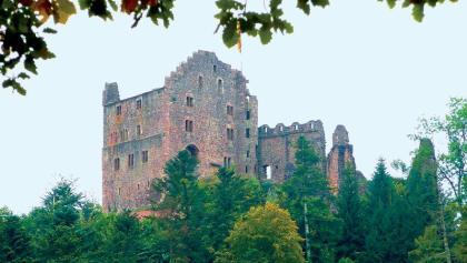 Die Burgruine Hohengeroldseck.