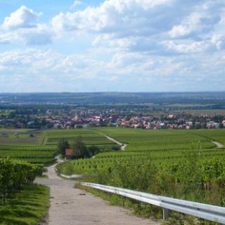 Panorama Rödelsee.