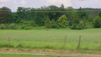 Saftige Wiesen prägen das Landschaftsbild.