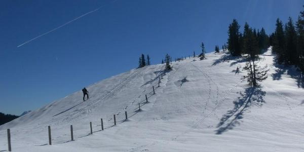 NW-Rücken und Gipfelanstieg des Kollmannsegg