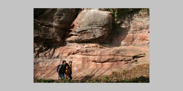 Felsen am Lindelbrunn