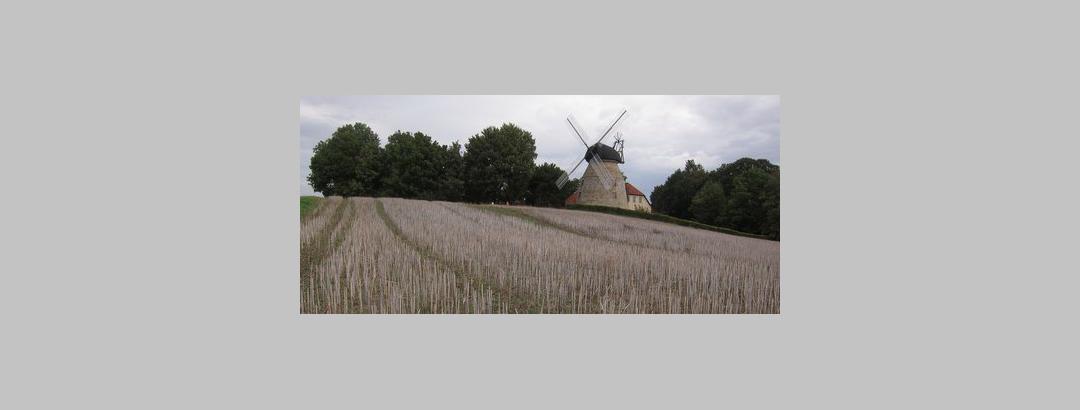 die Rodenberger Mühle