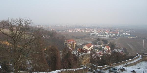 Vom Aussichtsturm aus bietet sich ein wunderschöner Blick ins Leiningerland.