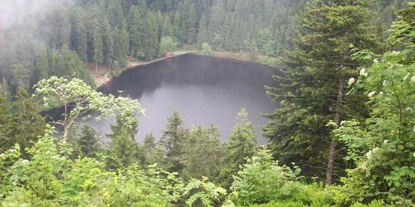 Der Glaswaldsee.