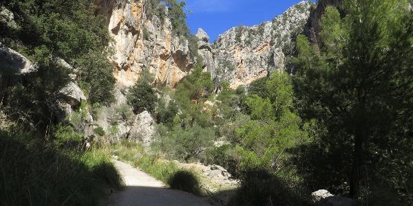Durch diese Schlucht, der Gorg de na Maria, führt ein steiles, betoniertes Sträßchen