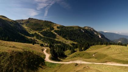 Alpe di Pampeago