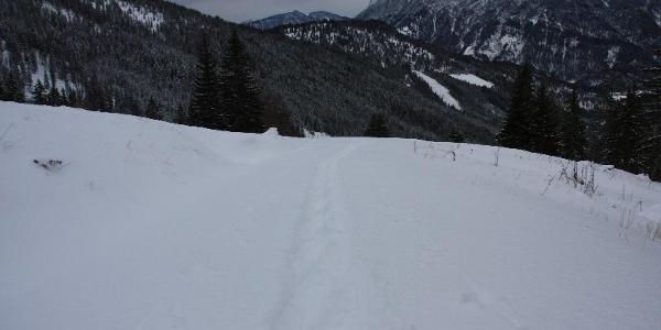 Spuren im Schnee, die ich im Abstieg sah