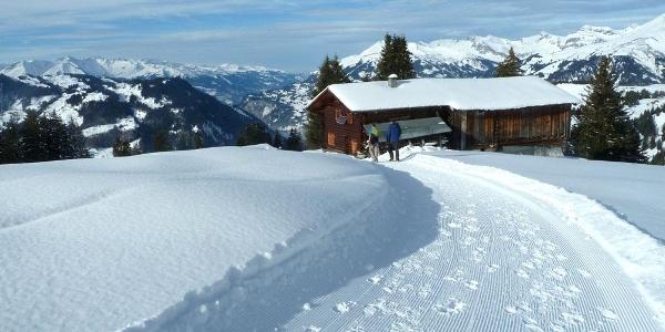 Unterwegs an der Wintersonne oberhalb Tratza