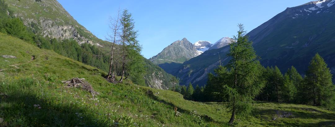 Vorderer Leiterkopf 2483m