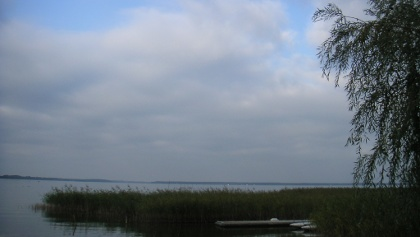 Das Ufer wird an vielen Stellen durch Schilfgras gesäumt.
