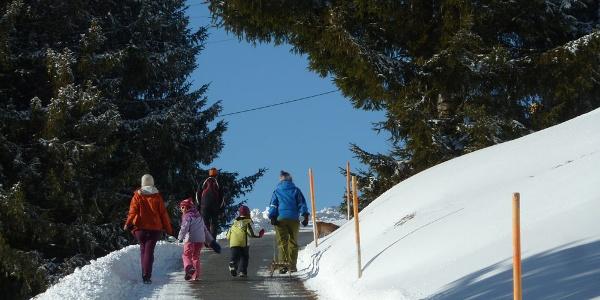Bis Geisswies geräumte Strasse, dann nur noch Schnee...