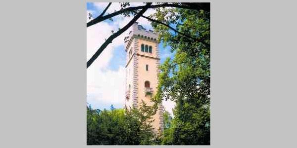Der Wolfertturm von 1891 thront über Ehingen.