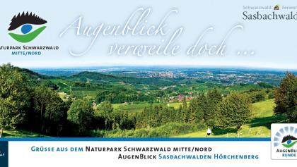 """""""Oh Augenblick verweile doch..."""" Ausblick vom Naturpark-AugenBlick auf dem Hörchenberg Sasbachwalden"""