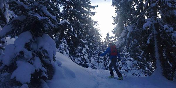 Skitour am Hochschwarzeck