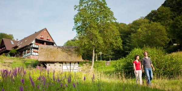 Straubenhöf-Mühle