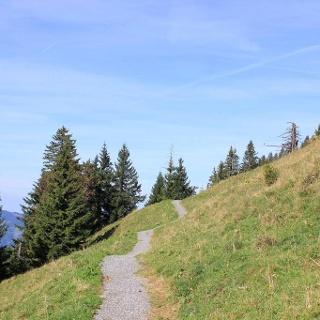 Bezau – Bezegg Loop - Bregenzerwald in Vorarlberg
