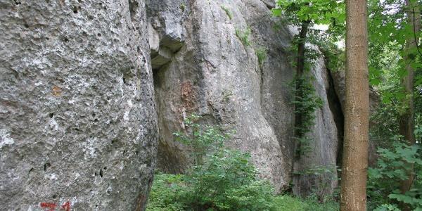 Schellnecker Wänd in Essing im Altmühltal