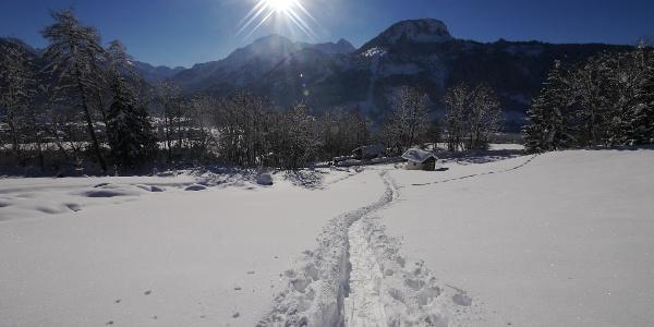 Mit den Schneeschuhen auf's Tiefenbacher Eck