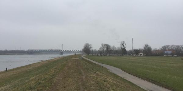 Maxau Am Rhein