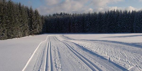 Nordwald-Loipen Karlstift