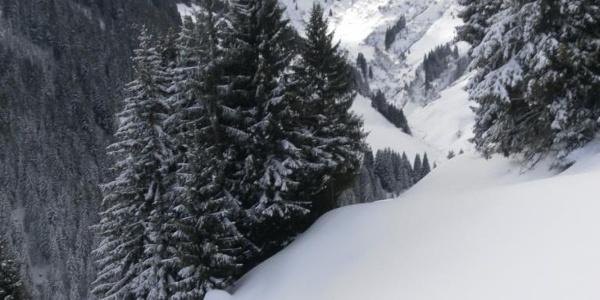 steile Almhänge