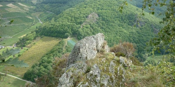 Blick über das Veldenzer Bachtal zum Langen Hammer Felsen