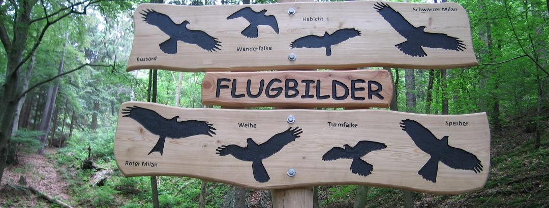 Station 15: Flugbilder