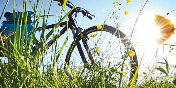 Viel Spaß bei Ihrer Radtour!