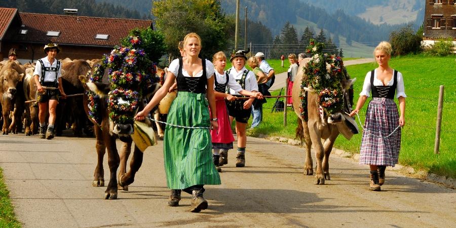 Viehscheid in Ofterschwang Gunzesried