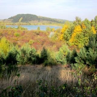 Ein Blick über die bergbaulichen Absitzteiche zum Sudmerberg