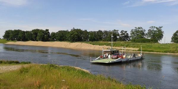 Fähre auf der Elbe