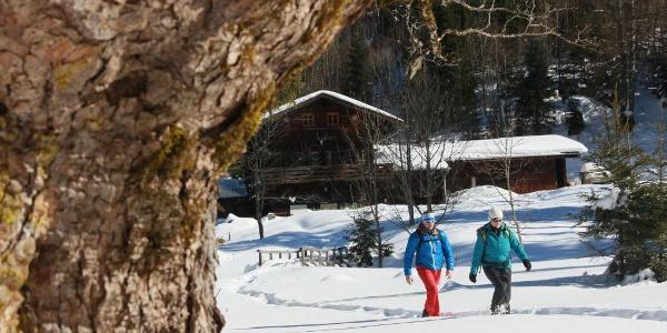 Wanderung Bleckenau
