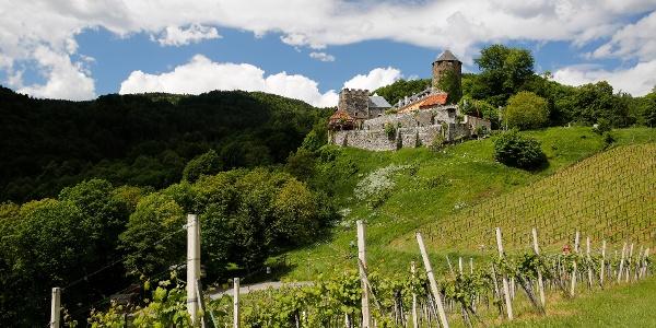 Blick auf Burg Deutschlandsberg