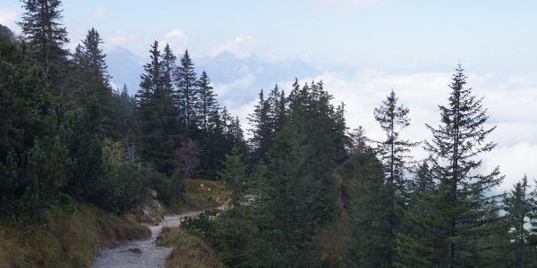 unterhalb der Bergstation