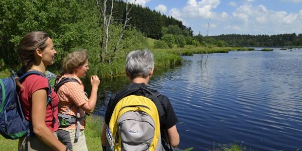 Wandern am Herbisweiher
