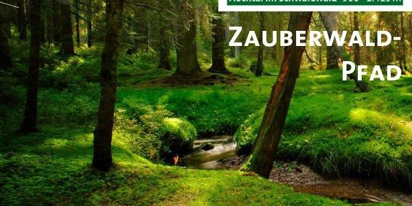 Bernau im Schwarzwald - Zauberwald-Pfad im Taubenmoos