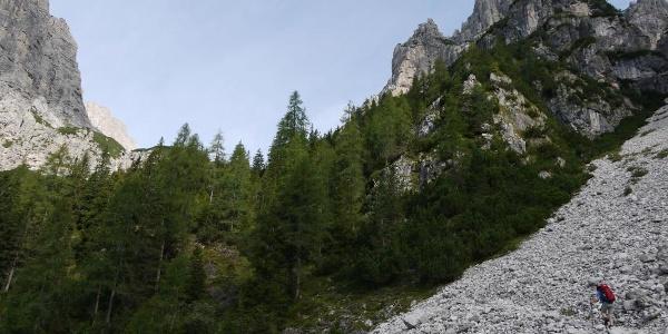 Die wenig begangene Etappenvariante vom Rif. Pordenone zum Rif. Padova beginnt im Val Meluzzo mit dem Aufstieg durch den Waldgürtel