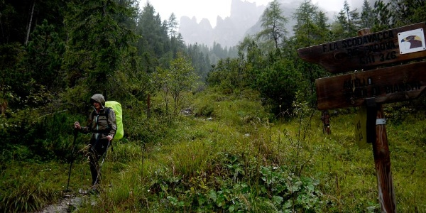 Mit Eintritt in den Wald über dem Rif. Giaf schließt sich der Kreis der Hüttenrunde