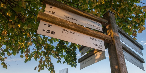 """Skulptur """"Blinker II"""" des WaldSkulpturenWegs"""