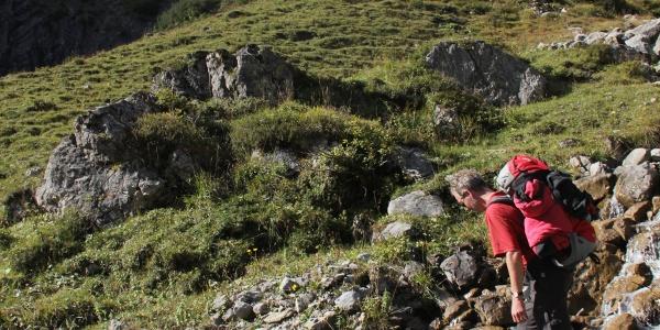 Aufstieg aus dem Talschluss des Großen Walsertals zur Oberen Alpschellaalpe