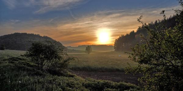 Im Ellscheider Trockenmaar dem Sonnenaufgang entgegen
